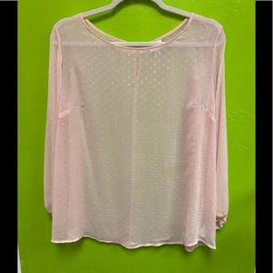 AVA + VIV Sheer Blouse Soft Pink Long Sleeve 3X